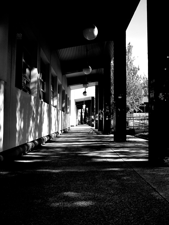Taken kneeling down, I like the depth and contrast of light in this photo.